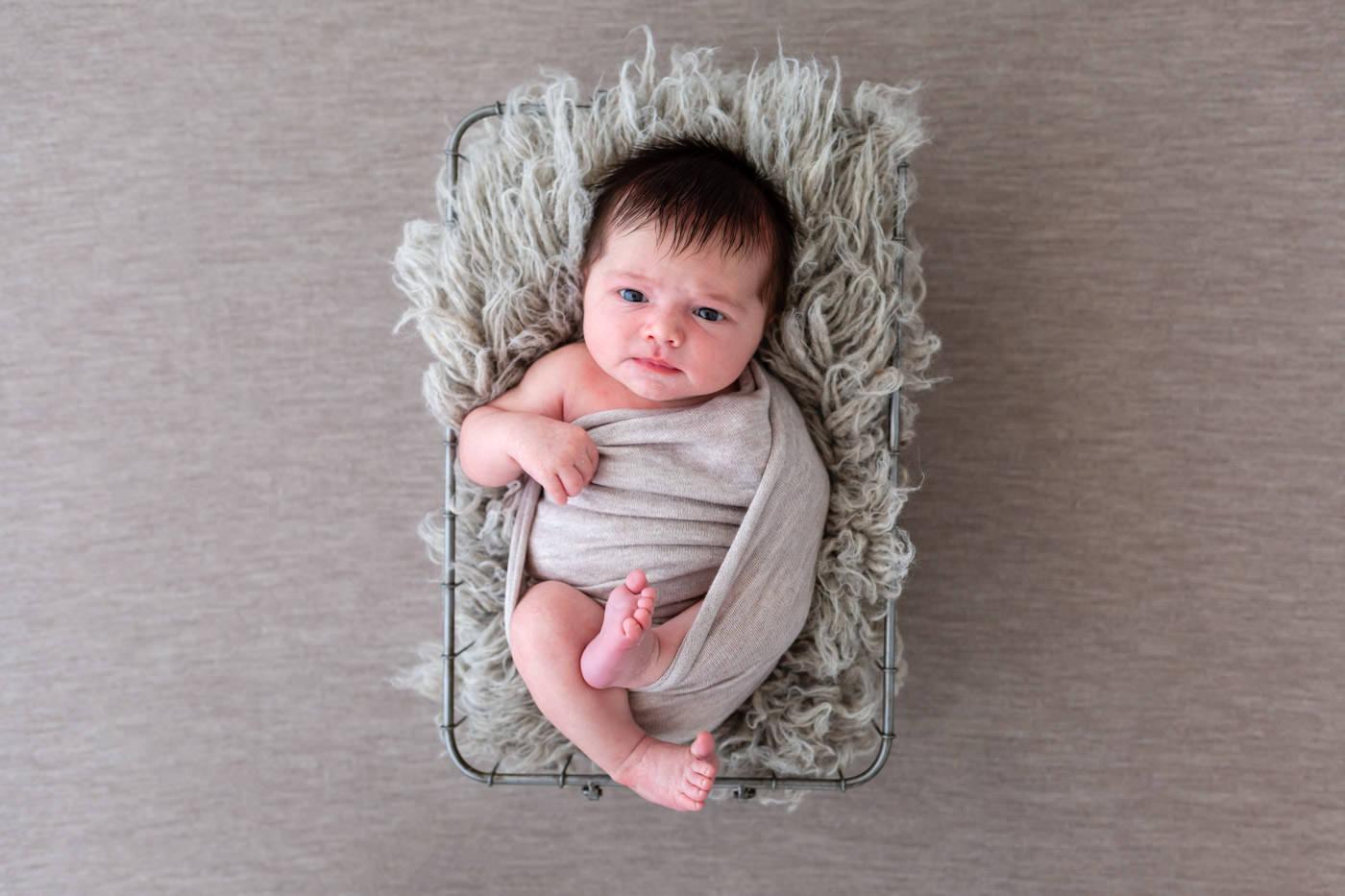 seance photo pour bébé